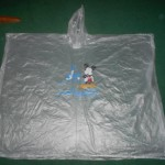 Rain Poncho from Walt Disney World