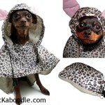 Rain Poncho for the dog